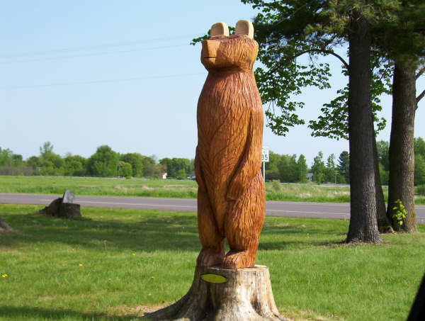 Bear Carving Welcomes You to Chapman Park